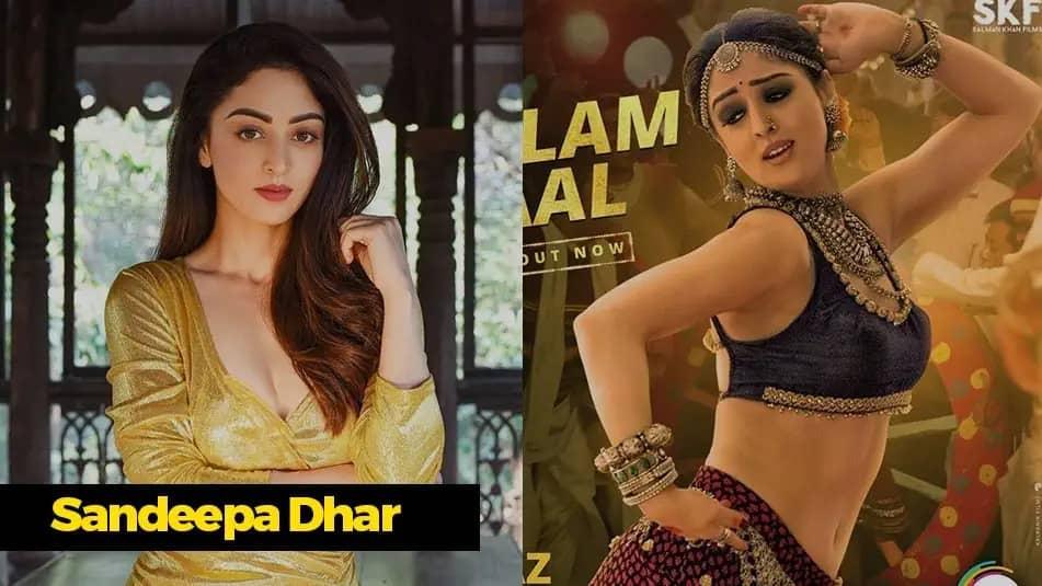 Kaagaz Movie Cast Sandeep Dhar